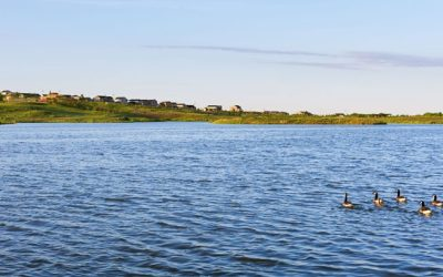 Reap all the Benefits of Waterside Living at Barefoot Lakes