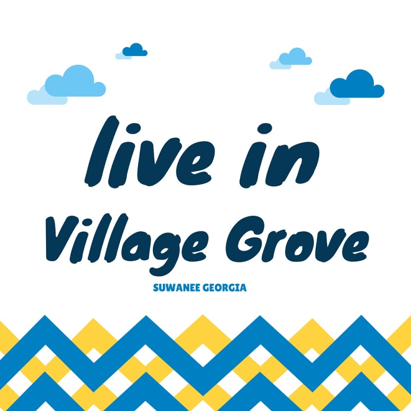 Suwanee GA Village Grove Neighborood
