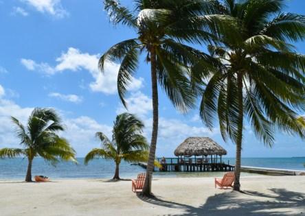 Go Ahead... Get Yourself an Island! Blackbird Island, Belize - Airbnb Private Island Escape (43)