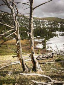 Travel Montana's Absaroka-Beartooth Wilderness