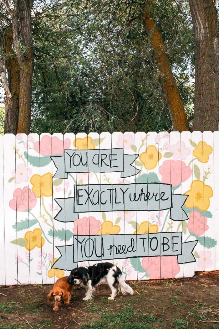 DIY fence mural- Ideas for how to paint a floral and quote on a backyard fence as art. Click through for the full tutorial on how to paint flowers on a wood fence.