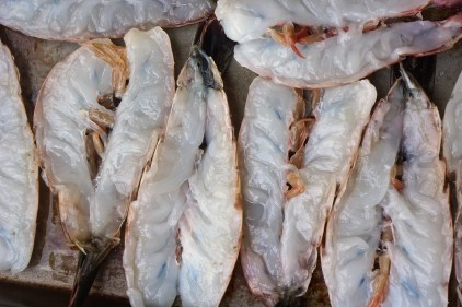 Rinse shrimp under cold water. Pat dry and lay shell down on a large rimmed baking pan.