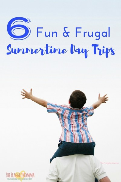 6 summertime day trips that are low cost and lots of fun. Bonus for educational trips as well. Stop that summer slide! Numbers 4 and 6 are on our summer bucket list