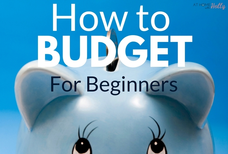 Budget For Beginners
