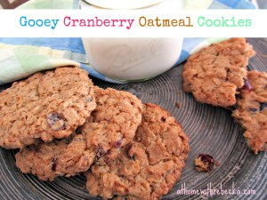 Gooey Cranberry Oatmeal Cookies