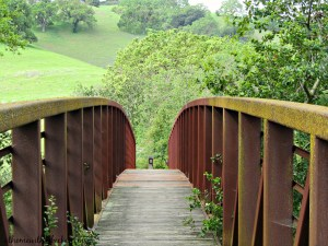 WORDLESS WEDNESDAYS Bridge and Green Meadow