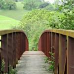 WORDLESS WEDNESDAYS Bridge and Green Meadow