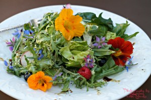 Edible Flower Salad with Basil Balsamic Vinaigrette