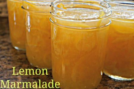 Lemon Marmalade – Canning for Christmas