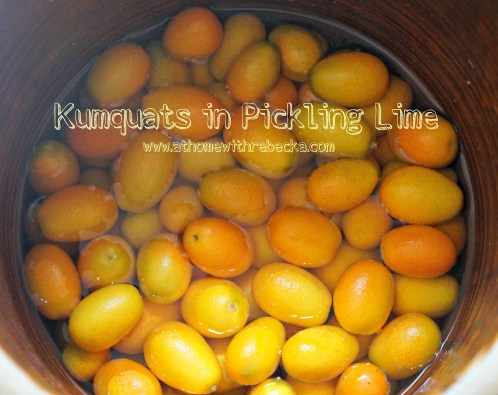Kumquats in pickling lime