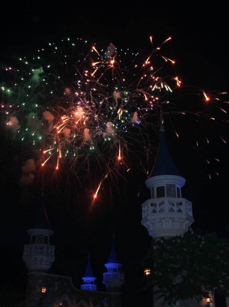Orlando Vacation - Disney's Magic Kingdom - Fireworks at Night - At Home With Zan