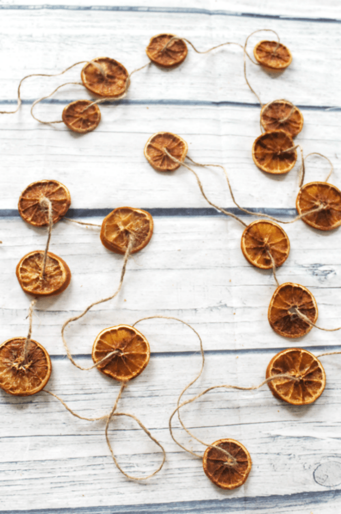 Dried Orange Slices - With - Cinnamon Flavored - At Home With Zan -