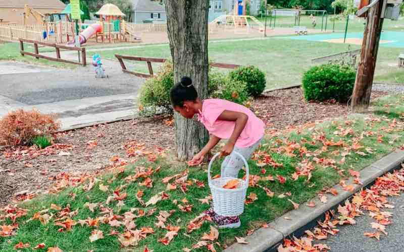 Fall Leaf Collecting – Fun Fall Activities for Kids
