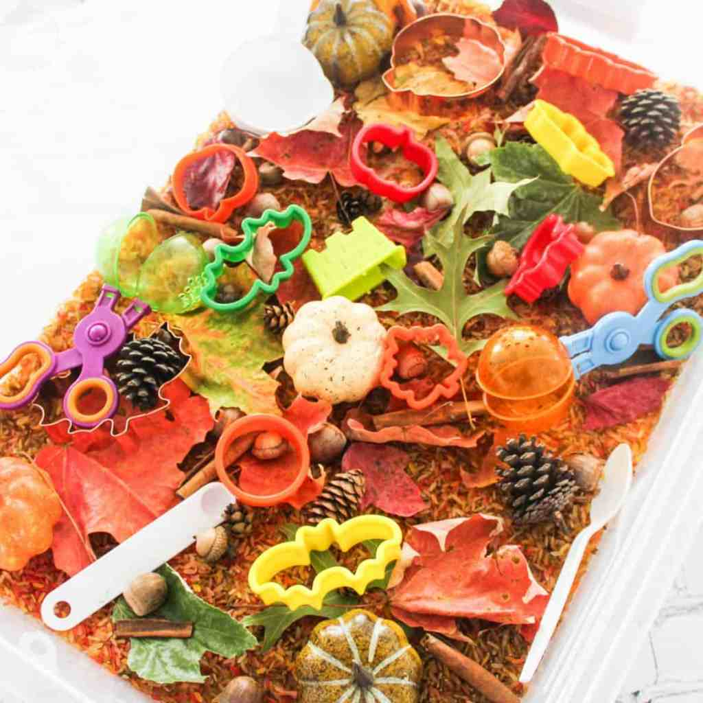 Fall-Sensory-Actitivy-Fin-for-Kids-Fall-Activity-Bins-for-Kids-Fall-Activities-for-Preschoolers-and-Kindergartners-Rice-Senory-Bins-Nature-Activity-Bins-athomewithzan
