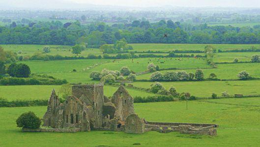 Hore Abbey - Cashel, Ireland