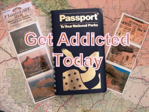 NP Passport 2-002
