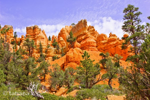 Red-Canyon-2