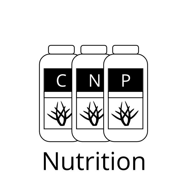 Nutrition CNP