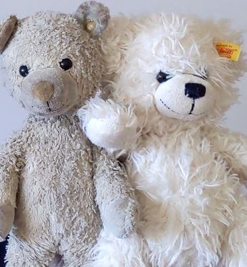 two teddy bears dubby and lissy