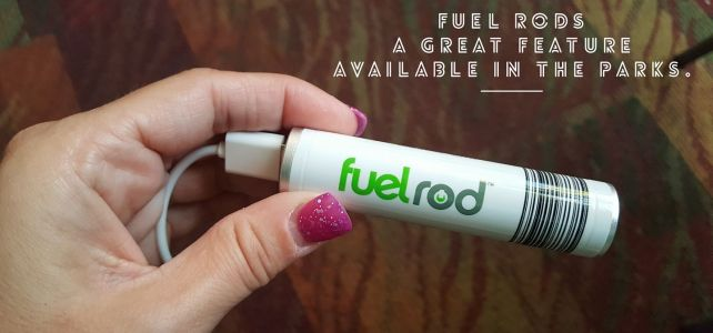 Fuel-Rods – a Disney Vacation (Power) Life-Saver!