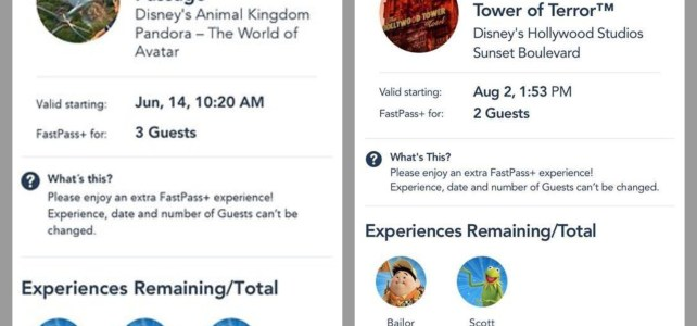 All about WDW's Rider Switch