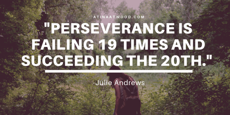 Perseverance is failing 19 times and succeeding the 20th. -Julie Andrews
