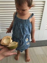 Learning about coconuts