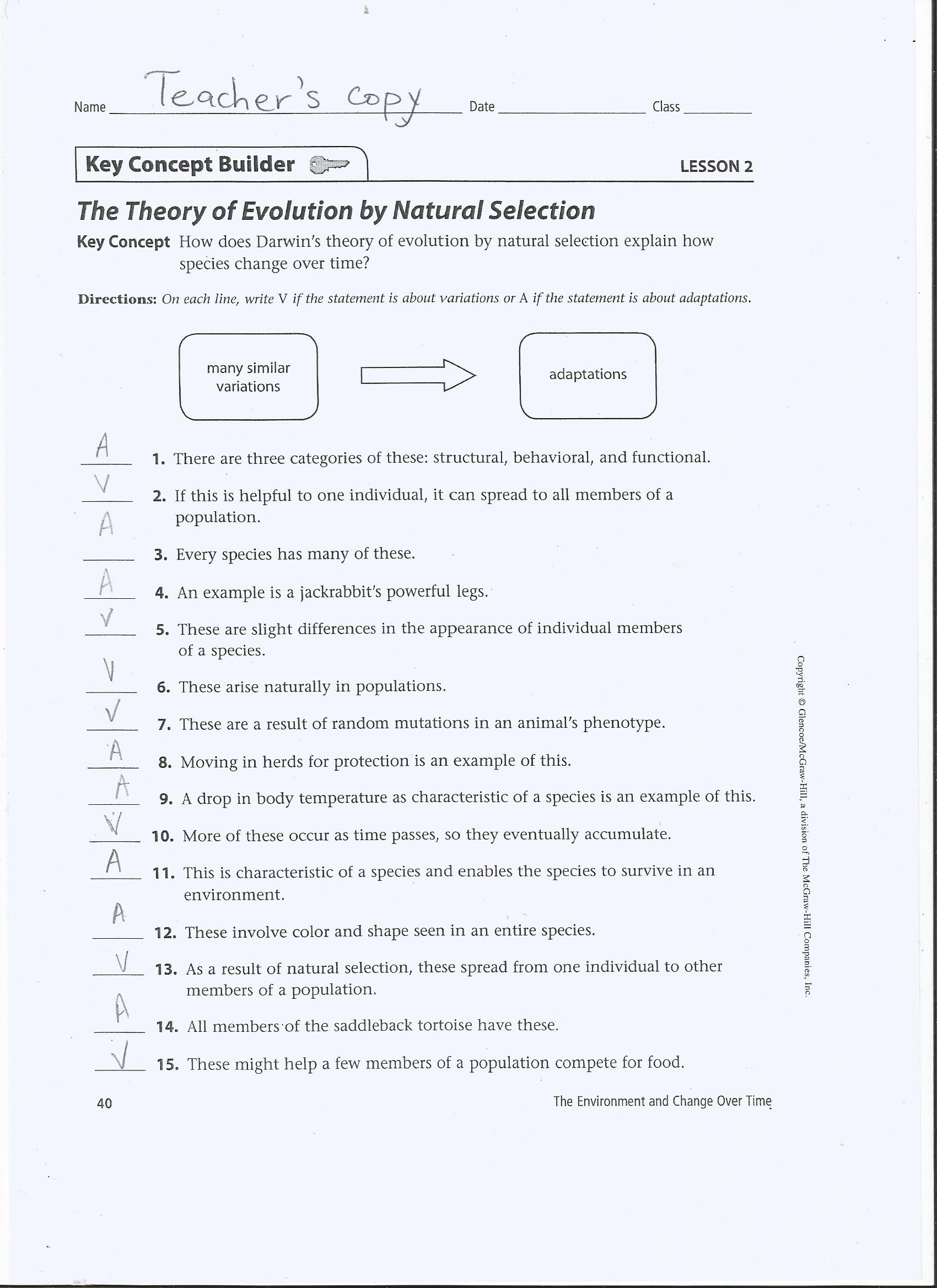 Theory Of Evolution Theory Of Evolution By Natural Selection Answers