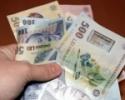 Salariul minim brut va fi de 700 lei