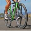 Viteza echipei de ciclisti Fastius Curier, atestata la Skoda Velo Challenge