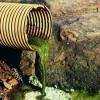 WWF: certificatele verzi acordate microhidrocentralelor incurajeaza distrugerea naturii