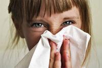 Cum scăpăm de alergii ?