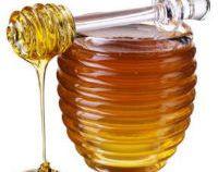 Beneficiile uimitoare ale mierii de albine