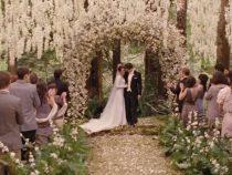 Stil de nunta: Twilight