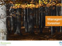 Educație pentru managementul responsabil al pădurilor – un proiect dezvoltat în parteneriat de Ingka Investments Romania și Junior Achievement Romania