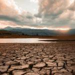 ANM: 2020, cel mai secetos an agricol din istorie în zona Dobrogei | AUDIO