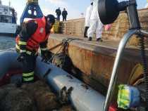 Tulcea: Oile înecate pe nava eșuată în Portul Midia, găsite îngropate lângă Dunăre