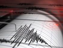 Cutremur cu magnitudinea 4 în Vrancea