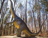 La Dino Parc Râșnov a ajuns cel mai înalt dinozaur din Sud-Estul Europei