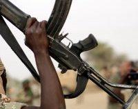 Nigeria: Liderul grupării teroriste Boko Haram s-ar fi sinucis