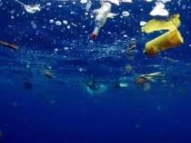 8 iunie, ziua mondială a oceanelor