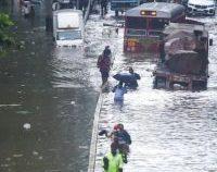 Ploile musonice au ucis zeci de persoane în India