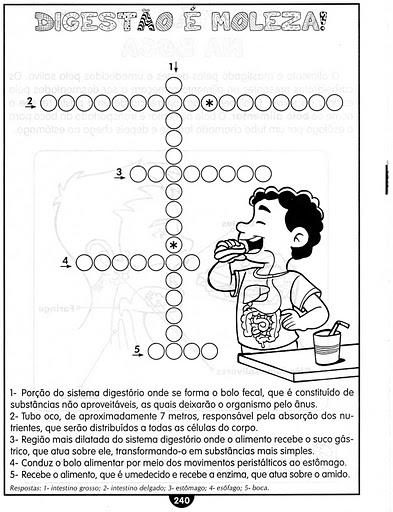 Sistemas digestivo - Exercícios para imprimir