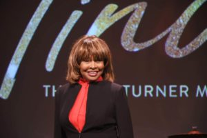 tina turner ike abuse
