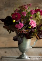 Robinson chose to fill a pewter pitcher with Candy Stripe dahlia, cranberry leaves and plum tree foliage, as well as spirea.