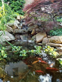 Don't rely on irrigation systems alone. During Atlanta's long, hot summers, supplemental hand watering is usually necessary, even if you have an irrigation system. Frequent checks of your irrigation system are also a good idea.