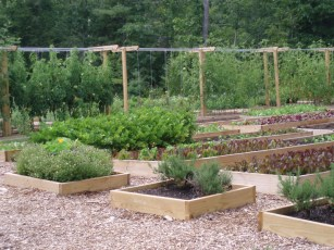 Organic gardens planted in raised beds on the property supply the restaurants of Old Edwards Inn and Spa with seasonal produce.