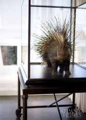 A porcupine Ferrier fell for at a Paris flea market is elevated by a BRADLEY base.