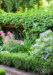 160601_JohnBanks_Garden_EGD_081