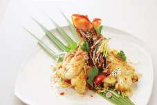 Native conch and lobster from the Caicos Bank compose a colorful, nutritious salad on the Shambhala lunch menu